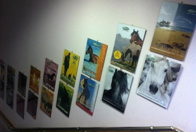 Catalogues on Stairway